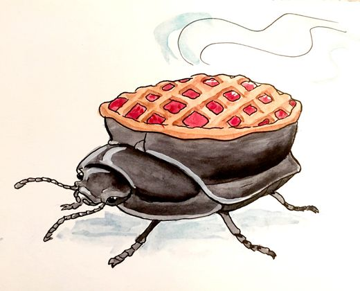 Cover image for Try some Beetle Pi: Up and running with TigerBeetle on a Raspberry PI 4